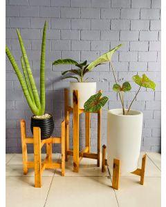 Wooden Plant Stand Set White Coat  (S/M/L)