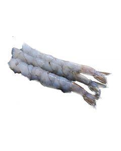 Nobashi 320g (tempura 3 inches each)